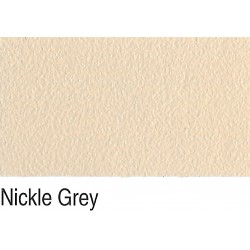 Esdee Syncoat Nickle Grey Stipple Finish