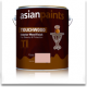 Asian Paints Touchwood Interior Glossy