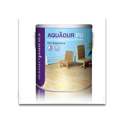 Asian Paints  Aquadur Exterior Matt